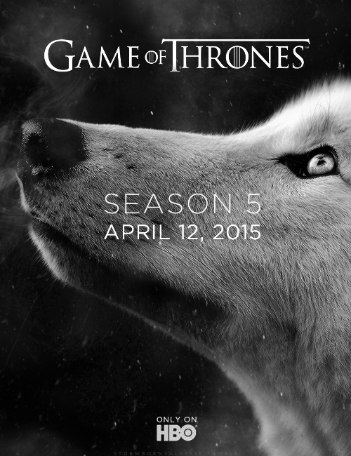 Game-of-Thrones-game-of-thrones-37993023-500-650